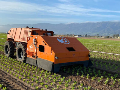 The FarmWise Titan is a semi-autonomous weeding robot.
