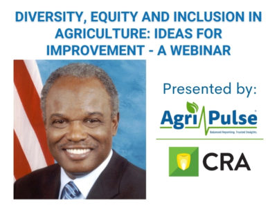Diversity, Equity and Inclusion Webinar