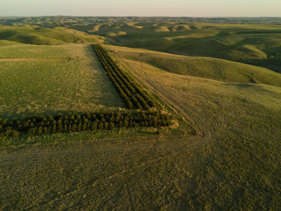 The conservation stewardship program (CSP) allows farmers and ranchers to enroll working lands, like these acres in South Dakota.
