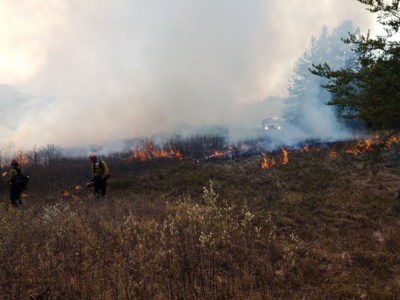Prescribed-fire-torching-J-Miesel-836x627-compressed.jpg