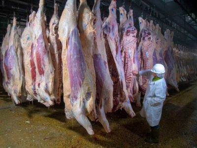 USDA inspection
