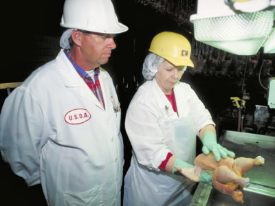 USDA Poultry Inspection