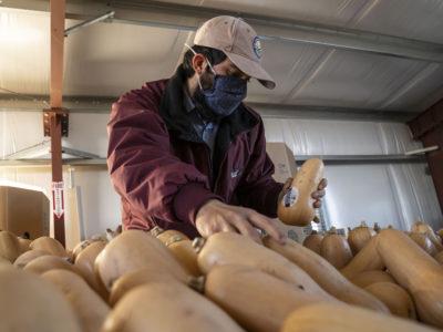 Arnaldo Alfaro farmworker UC Davis