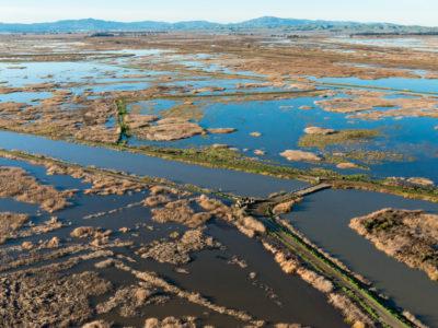 Delta flooding