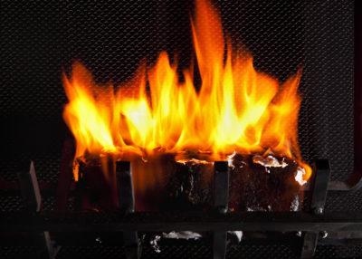 burning bio based log