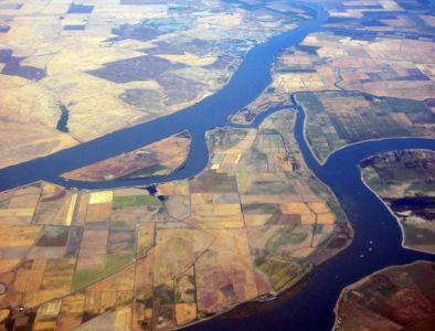 Delta farms