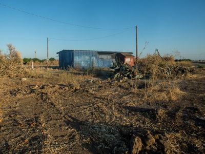 fallowed farmland in Central Valley