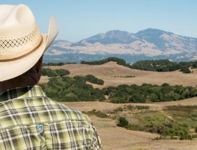 farmer rolling hills