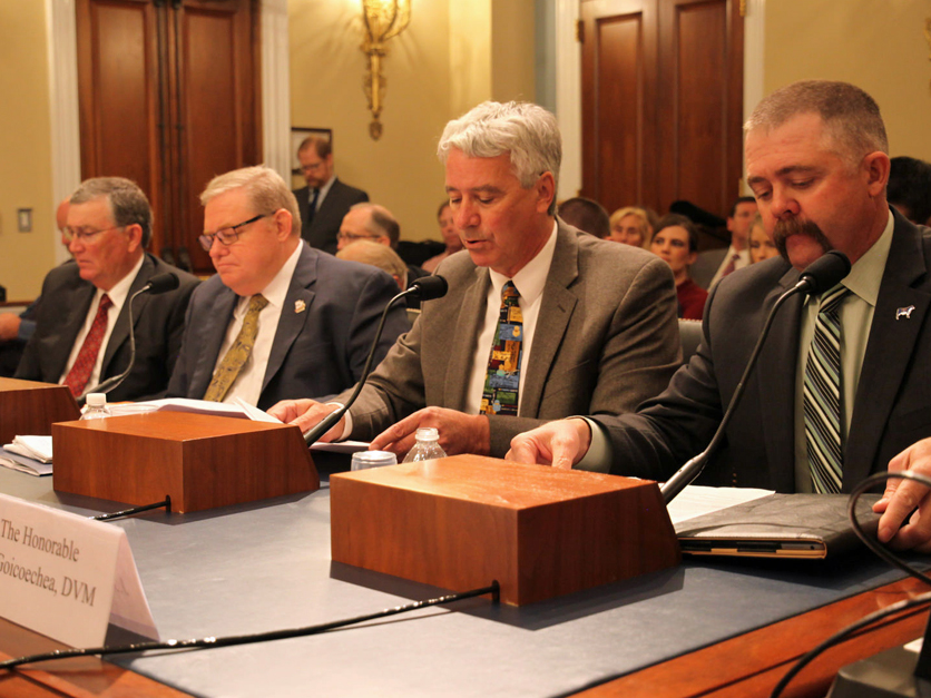 House Natural Resources Committee Witnesses
