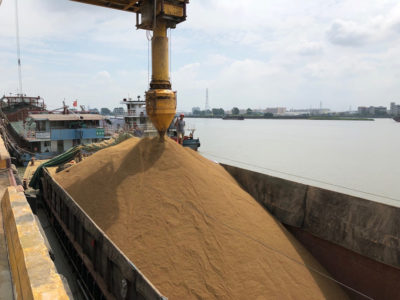 China soybean delivery