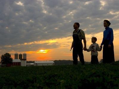 Familyfarm 836