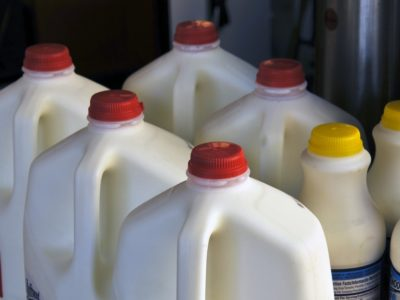 Jugs of Milk