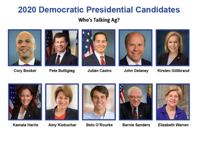 2020 dems talking ag 2