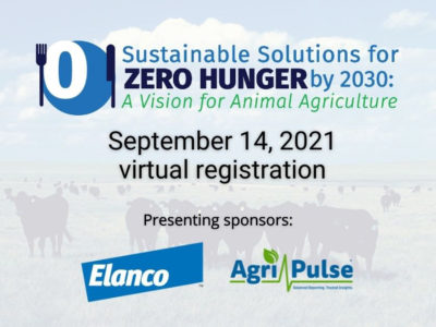 Sustainable Solutions for Zero Hunger by 2030: A Vision for Animal Agriculture