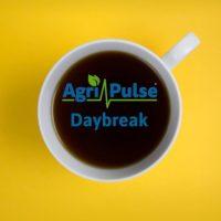 Daybreak Podcast logo
