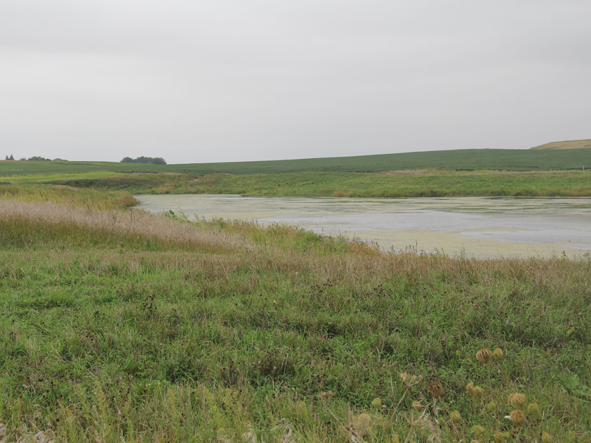Raccoon River site
