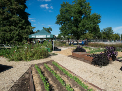 USDA garden