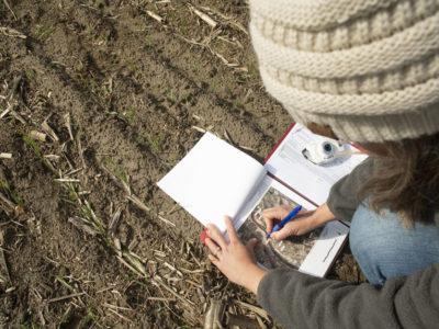 Crop Insurance Study