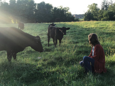 Lillie Beringer and cows