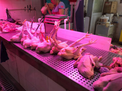 Chicken in Chinese wet market