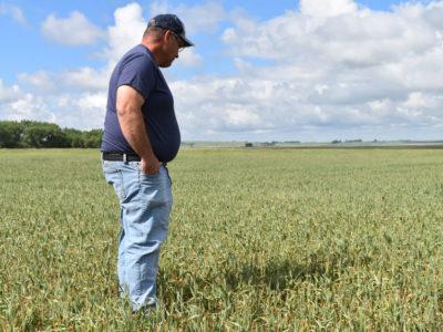 North Dakota farmer Mike Rott