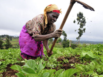 African agriculture