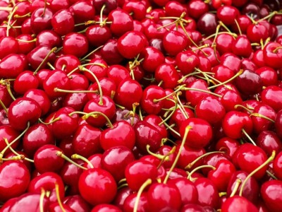 Cherries for 920 newsletter
