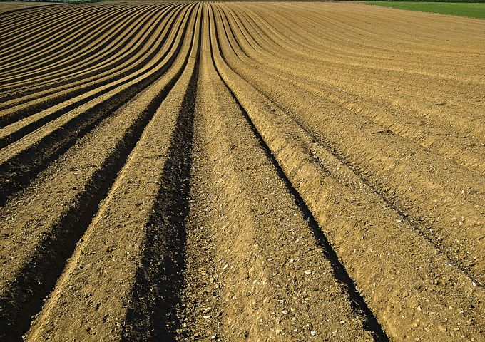 Opinion: Crop insurance rules hinder soil health | 2017-04