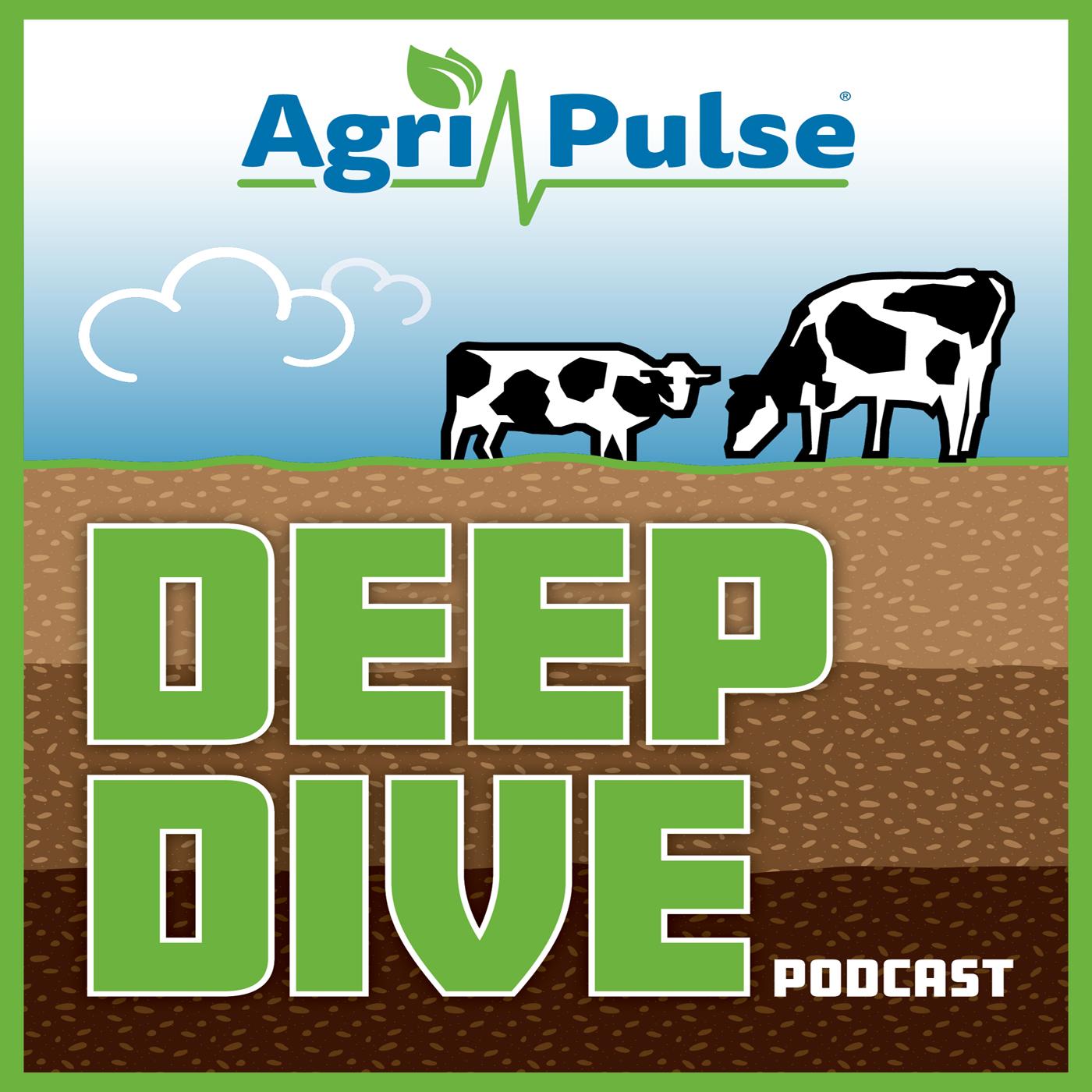 Agri-Pulse Deep Dive on Dairy: Milk Money