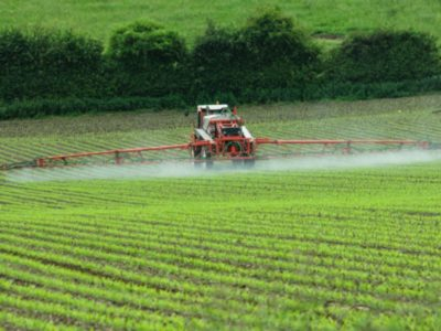 Red Tractor spraying field