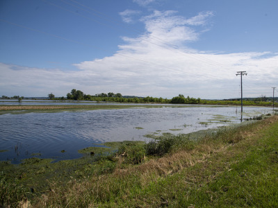 Flooded field june 19 2