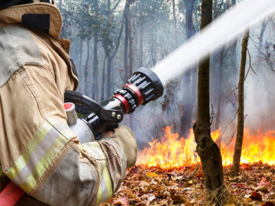 Wildfire_naturaldisaster
