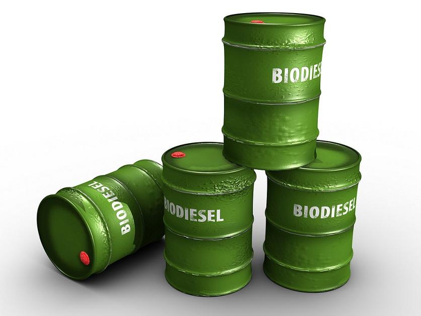 Expected summer biodiesel imports put European margins under pressure