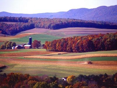 Farm Landscape 2.0