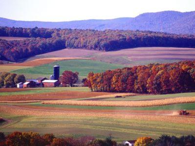 farm landscape.2