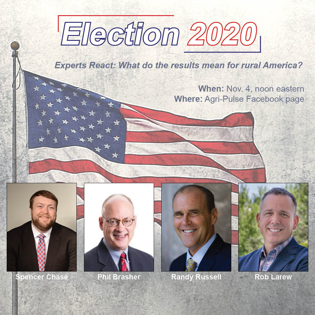 Election 2020 Experts React Facebook event