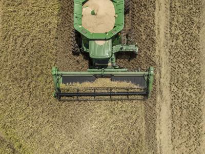 Rice harvest aerial 2