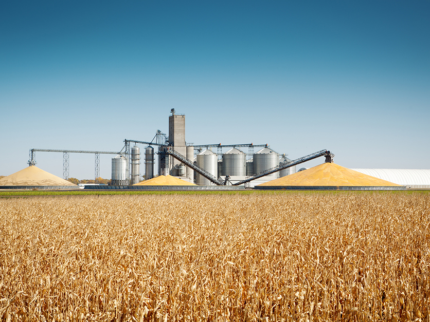 grainstorage_grainbin_crops_harvest