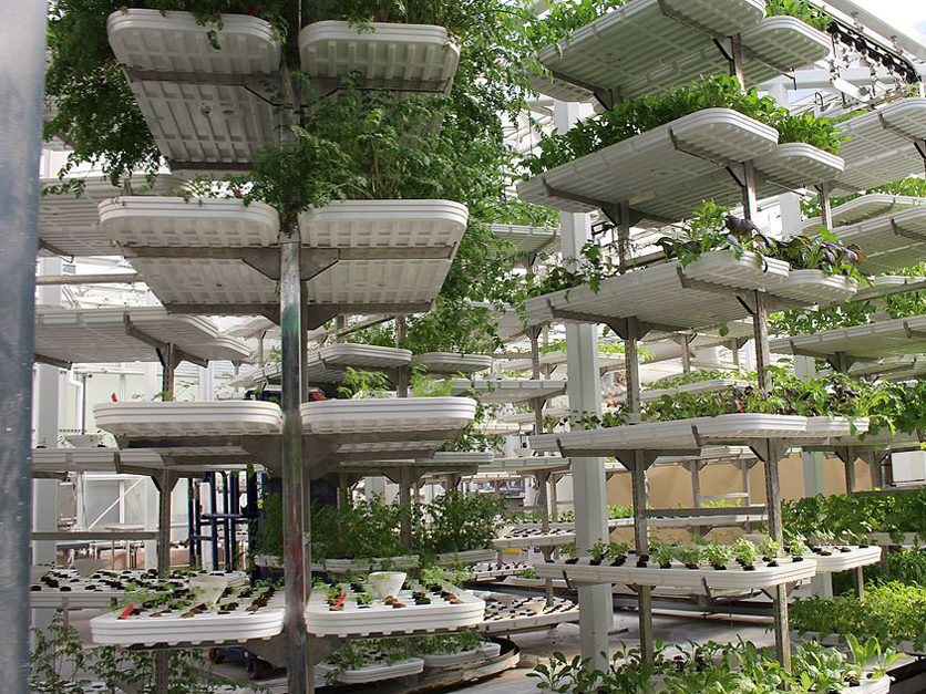 the benefits of vertical farming The material matters in vertical farming success in vertical farming results from a carefully balanced mix of ph, nutrients, light, temperature and humidity.