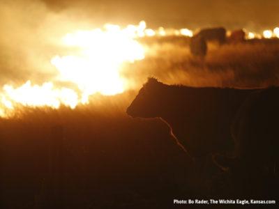 (Photo: Bo Rader, The Wichita Eagle, Kansas.com)