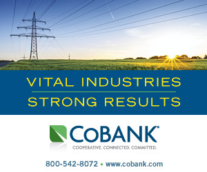 Vital Industries - Strong Results