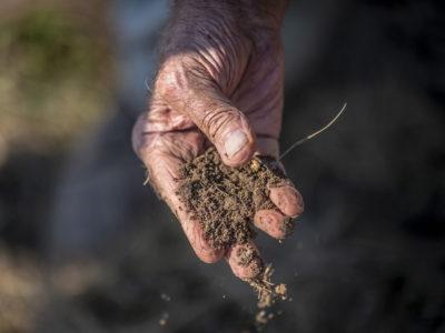 Dirt, soil