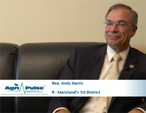 Feature: Rep. Andy Harris' Maryland district lies at a unique intersection of agriculture issues with the Chesapeake Bay and a good deal of poultry production. He talks about his district and his time on the House Appropriations Committee in this week's video.