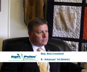 Arkansas' Rick Crawford discusses transitioning from journalist to congressman and his priorities as a subcommittee chair with Agri-Pulse's Spencer Chase.