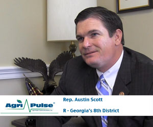 For the second time in as many elections, Rep. Austin Scott, R-Ga., was unopposed and will begin his third term in Congress in January. In this video, Scott talks with Agri-Pulse's Spencer Chase about priorities of the House Ag Committee in the 114th Congress as well as being a younger than average congressman rising up the ranks of GOP leadership.