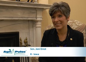 Feature: Sen. Joni Ernst, R-Iowa, sits down with Agri-Pulse to discuss her goals on the Senate Agriculture Committee and how she hopes to address upcoming challenges such as the avian influenza outbreak and proposed changes to the Renewable Fuel Standard.