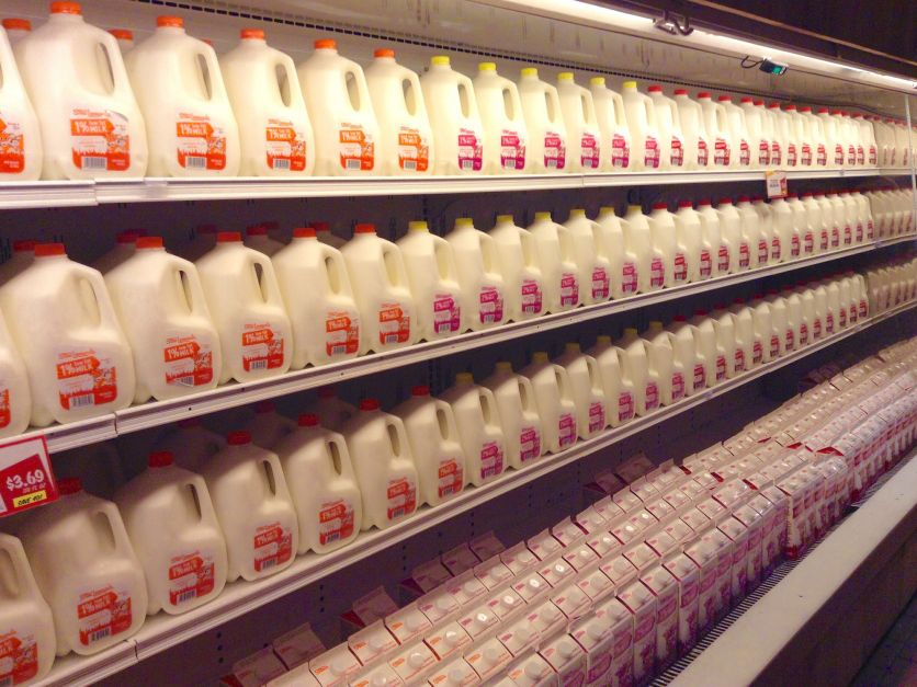 Milk jugs in store