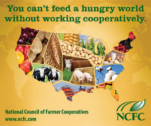 You cannot feed a hungry world without working cooperatively-NCFC