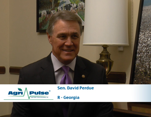 Feature: A lifelong businessman, Georgia Republican David Perdue brings a unique perspective to the Senate and its agriculture panel. In this video, he talks with Agri-Pulse about what he wants to accomplish during his time in the Senate and how his background will help him do it.