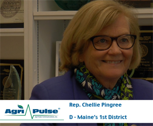 Feature: Rep. Chellie Pingree is one of four Democrats on the House appropriations subcommittee that funds USDA, giving her a unique chance to shape farm policy. The organic farmer talks with Agri-Pulse in this video.